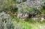 Horse Lake Rd, Susanville, CA 96127