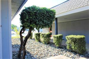3330 Churn Creek Road, Suite D2, Redding, CA 96002