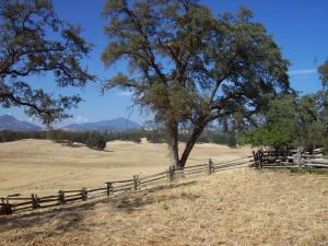 12952 Blue Sky Rd, Bella Vista, CA 96008