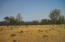 Campo Dios Road, Shingletown, CA 96088