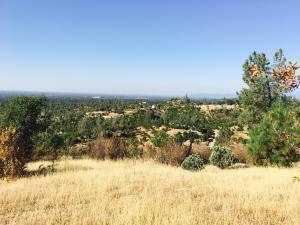 Elk Trail, Redding, CA 96003