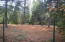 18607 Little Round Mtn Lookout Rd., Montgomery Creek, CA 96065