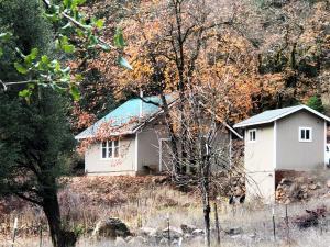 16800 Trinity Mountain Rd, French Gulch, CA 96033