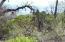 #001 5.70 ac Christy Creek Ln, Shingletown, CA 96088