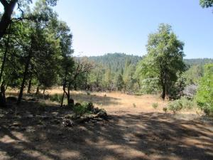 30425 Frontier Rd, Oak Run, CA 96069