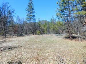 00000 Sierra Way, Fall River Mills, CA 96028