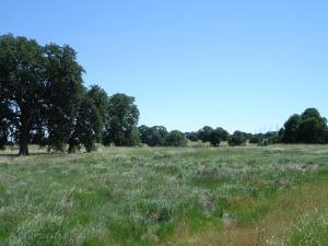 Lot #64 River Downs Way, Cottonwood, CA 96022