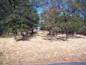 21922 Hayfork Pl, Cottonwood, CA 96022