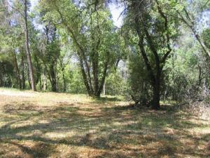 Swede Creek, Oak Run, ca 96069