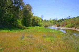 Oak Bottom Road, Anderson, CA 96007