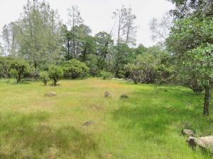 60 acres Seaman Gulch Road, Bella Vista, CA 96008