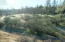 40 Acres Lot 178 Fiddlers Rd, Ono, CA 96047