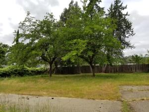 13670 Shasta St, Shasta Lake, CA 96019