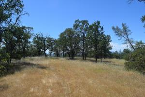 View Dr, Cottonwood, CA 96022