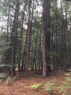 Oak Ln, Shingletown, CA 96088