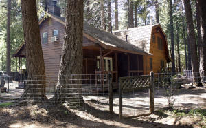9441 Thatcher Mill Rd, Shingletown, CA 96088