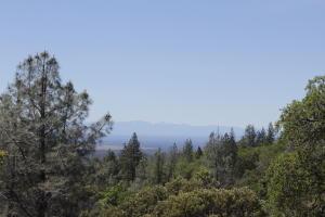 154 Acres Donkey Mine Rd, Oak Run, CA 96069
