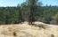 20 +- Ac Coal Pit Rd, Igo, CA 96047