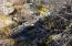 10 +- Ac Cabin Lane, Round Mountain, CA 96084