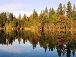 Property from across Woodridge Lake in Fall.