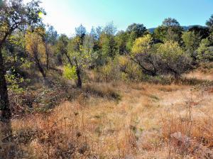 State Highway 299, Round Mountain, CA 96084