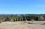 21807 Robledo Rd, Palo Cedro, CA 96073