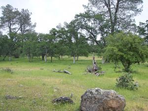 37 acres Wildcat Road, Shingletown, CA 96088