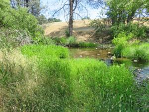 93 acres Oak Run Road, Oak Run, CA 96069