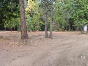 Long Hay Flat Rd, Shingletown, CA 96088