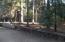 30923 Bambi Dr, Shingletown, CA 96088
