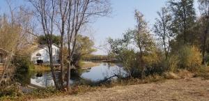 22462 Edgewater Dr, Cottonwood, CA 96022