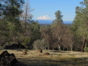 40 acres Wildcat Road, Shingletown, CA 96088