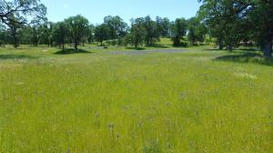 38.8 +- Ac Squaw Grass Trail, Redding, CA 96003