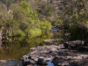 291 Acres Hyrax Road, Millville, CA 96062