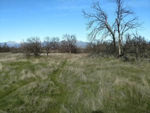 Lower Coal Pit Dr, Igo, CA 96047