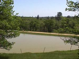 17.3 acres Two Feathers Rd, Cottonwood, Ca 96022