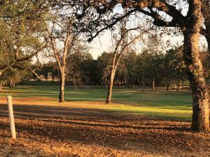 One of the last vacant lots on the golf course. Bella Vista fees already PAID!