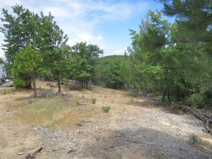 20 acres Backbone Ridge Road, Bella Vista, CA 96088