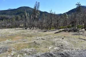 660 Dirt Rd, Hayfork, CA 96041