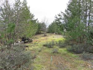 20 acres Backbone Ridge Road, Bella Vista, CA 96008