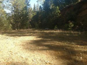 Red Cliff Way, Lakehead, CA 96055