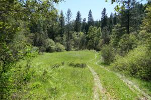 135 acres Gilman Road, Lakehead, CA 96051