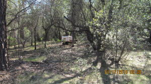 Creek Trail, Redding, CA 96003