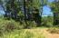 9.9 Acres Manti, Montgomery Creek, CA 96065