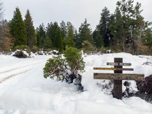 cayuse meadows lane, mt shasta, ca 96067