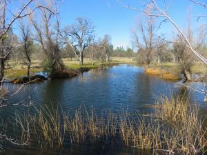 41acres Ash Creek Road, Anderson, CA 96007
