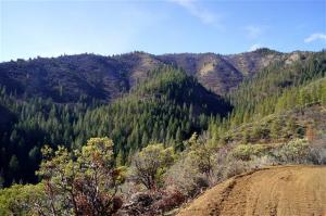Ash Creek Road, Hornbrook, CA 96044