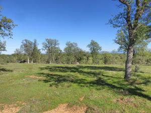 40 acres off Oak Lane, Cottonwood, CA 96022