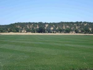 Gover Rd, Anderson, CA 96007