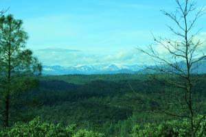 9.7 acres Lookout Mountain Road, Oak Run, CA 96069